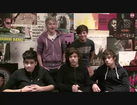 funny one direction, harry styles, lol, penis jokes, Penis Jokes GIFs