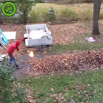 Watch and share Burning Some Leaves GIFs by bijlenman on Gfycat