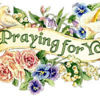 praying for you GIFs