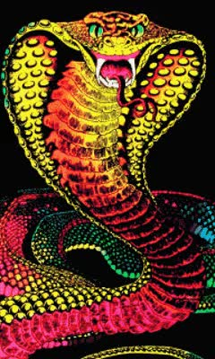 Watch and share Download Animated 240x400 «Snake» Cell Phone Wallpaper. Category: Pets & Animals GIFs on Gfycat