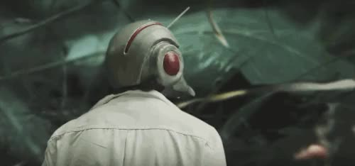 Watch this ant-man GIF on Gfycat. Discover more ant man, ant-man, ant-man and the wasp, antman, hank pym, marvel, scott lang, werner herzog GIFs on Gfycat