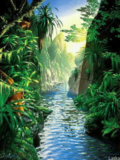 nature GIFs