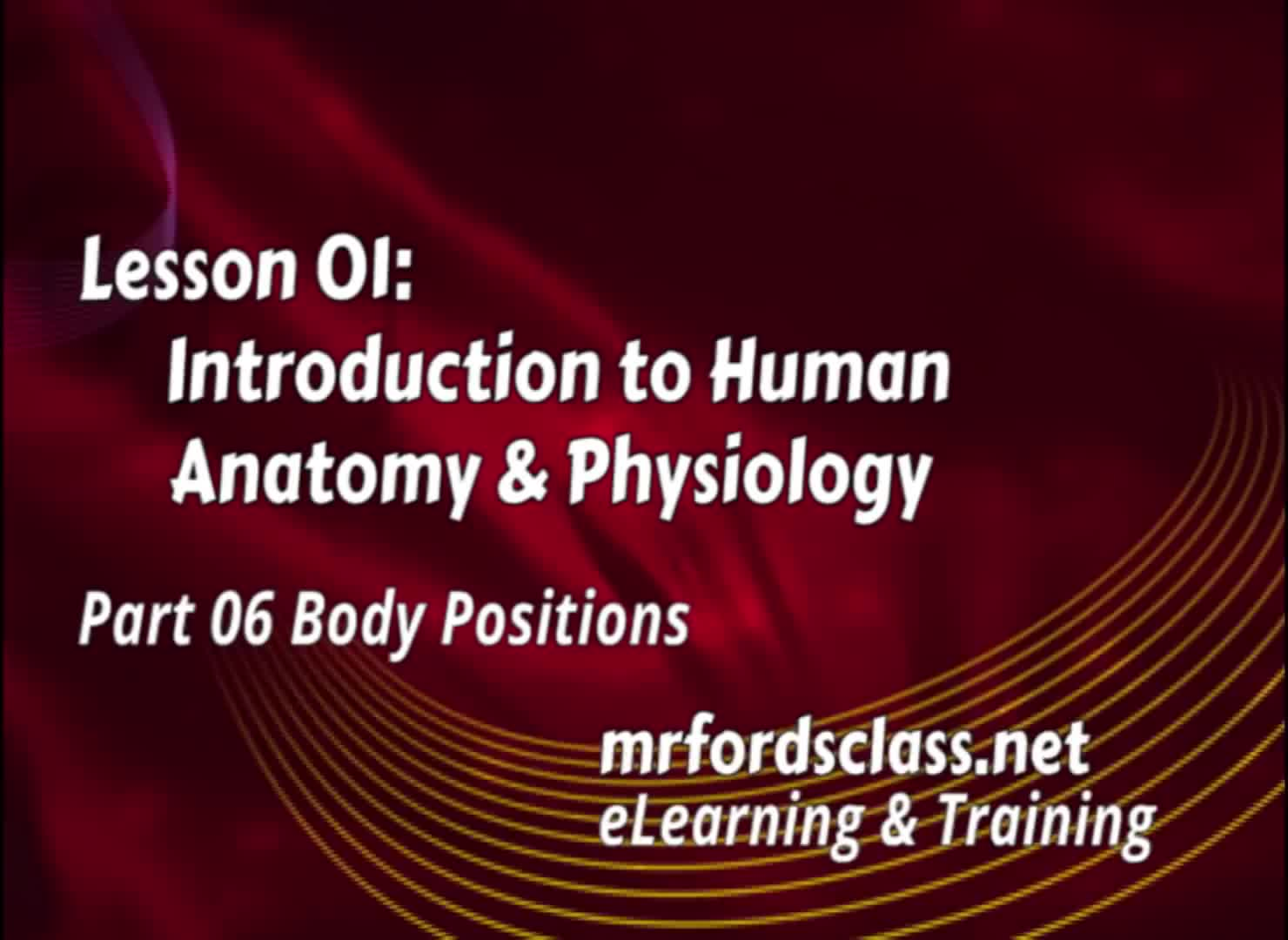 Introduction To Anatomy Physiology: Body Positions (01:06) | Find ...