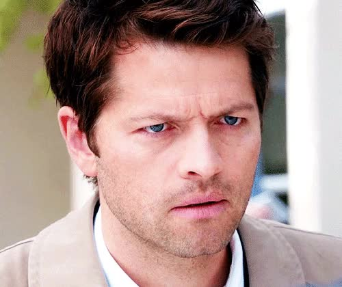 Watch and share Misha Collins GIFs and What GIFs by Reactions on Gfycat