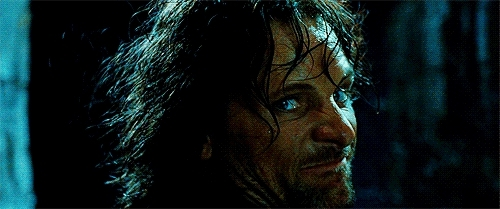 lord of the rings, lotr, lord of the ring GIFs