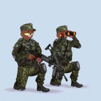 Watch and share Https://www.wykop.pl/wpis/34472811/bron-militaria-strzelectwo-spurdo-heheszki/ GIFs on Gfycat