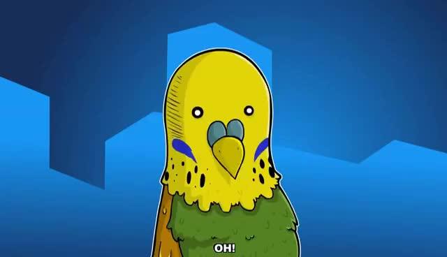 Budgie Singing To Mirror | Parakeet Sounds GIF | Gfycat