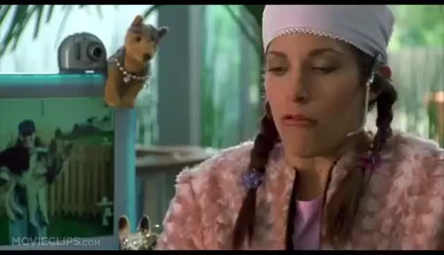 Watch Big Fat Liar Astrid GIF on Gfycat. Discover more related GIFs on Gfycat