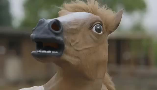 Watch this horse GIF on Gfycat. Discover more Horse, Horse mask, Tomska, animals, equestrian, funny, horse, horse mask, horse racing, tomska GIFs on Gfycat
