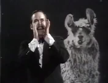 Watch monty python GIF on Gfycat. Discover more cleese, john, llama, monty, python GIFs on Gfycat