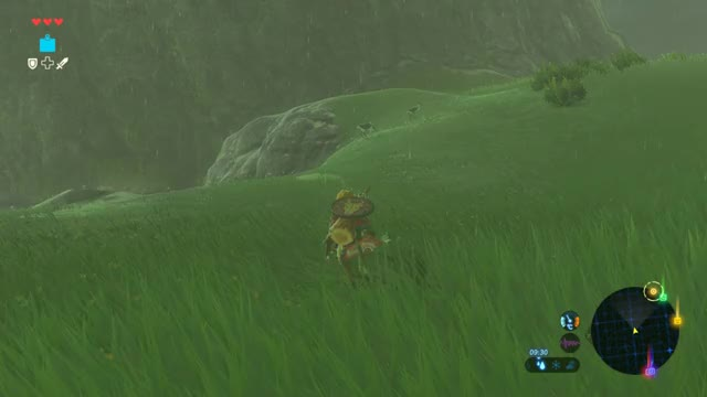 Watch and share Zelda GIFs and Botw GIFs by ringating on Gfycat
