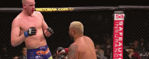 mixed martial arts, mma, Mark Hunt Mma GIFs