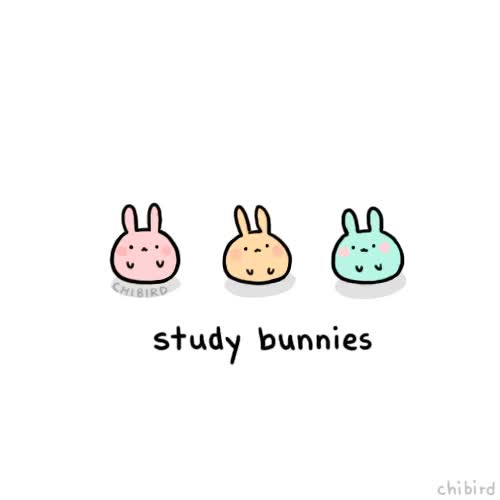 Watch and share Study Bunnies GIFs on Gfycat