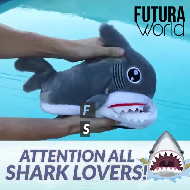 Watch and share Fuzzy Shark Slippers GIFs by Nikkie Cinco Munda on Gfycat