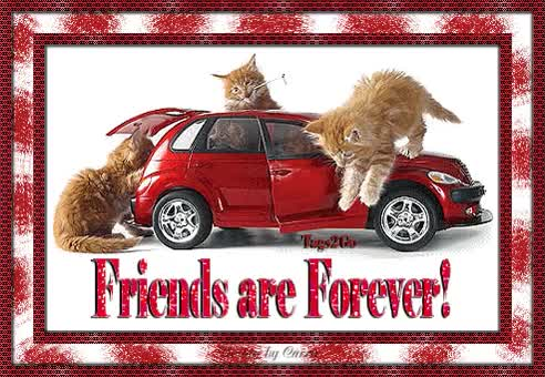 Watch and share Friends Forever animated stickers on Gfycat