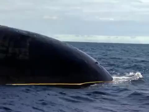 Watch and share The Real Red October: Russian Typhoon Class Submarine Severstal In The Barents Sea (reddit) GIFs on Gfycat
