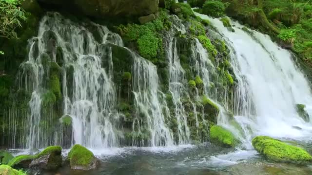 Watch Waterfall GIF by P.Gifs (@panapj) on Gfycat. Discover more gif, nature, waterfall GIFs on Gfycat