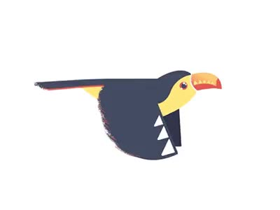 Watch and share Toucan Flap Cycle GIFs on Gfycat