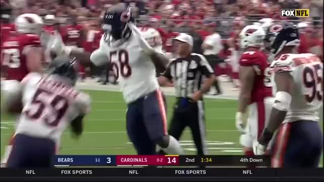 Watch and share Arizona Cardinals GIFs and Chicago Bears GIFs by btbarret on Gfycat