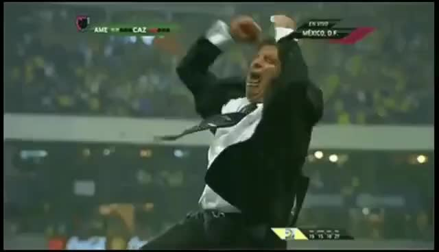 Watch and share Mexican Coach GIFs on Gfycat