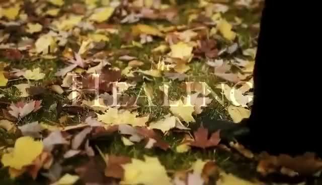 Watch healing GIF on Gfycat. Discover more walking GIFs on Gfycat