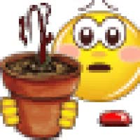 Watch and share Dead Plant Smilie animated stickers on Gfycat