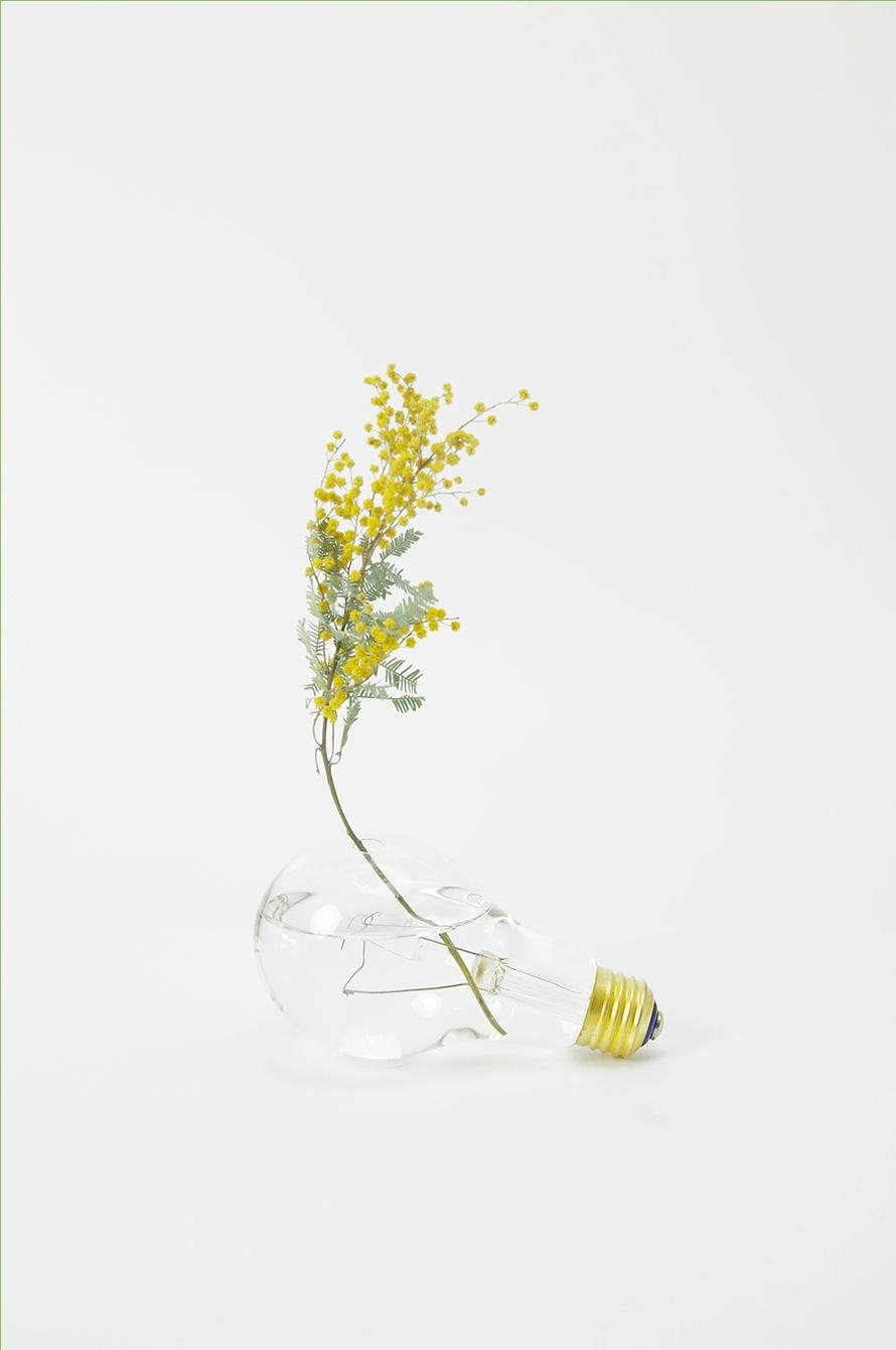 light bulb vase GIFs