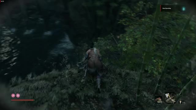 Watch and share Sekiro GIFs by ZulZah on Gfycat