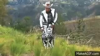 Watch and share Delfín Hasta El Fin GIFs on Gfycat