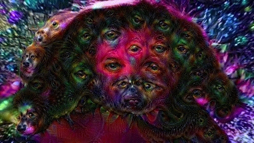 deep dream, deepdream, drugs, google, hallucination, smash tv, trippy, wtf, A loop of our first experiment using DeepDream on video and  GIFs