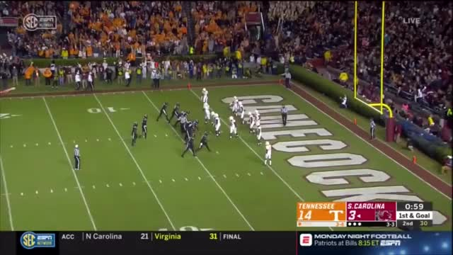 Watch and share South Carolina GIFs and Gamecocks GIFs by sportsfanaticmb on Gfycat