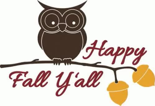 Watch and share Happ Fall Yall GIFs on Gfycat