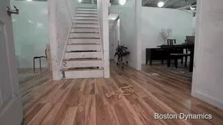 Watch and share Robodog Slips On Banana Peel • R/BetterEveryLoop GIFs on Gfycat
