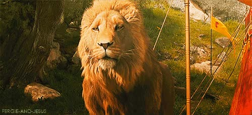Watch aslan GIF on Gfycat. Discover more related GIFs on Gfycat
