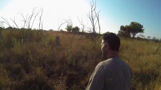 Watch and share GoPro: Lion Hug GIFs by Slim Jones on Gfycat