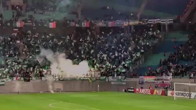 Watch and share Celtic Fans Against Leipzig GIFs by notorious09 on Gfycat