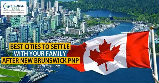 Watch and share New Brunswick Province Immigration Process – Global Tree GIFs by Joy on Gfycat
