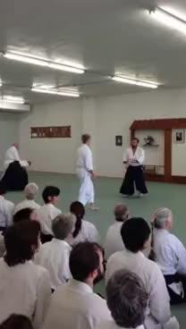 aikido, shodan GIFs