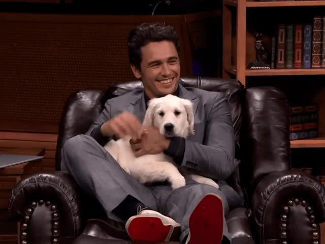 Watch this james franco GIF by The GIF Smith (@sannahparker) on Gfycat. Discover more awww, cute, james franco, puppy, tonight show GIFs on Gfycat