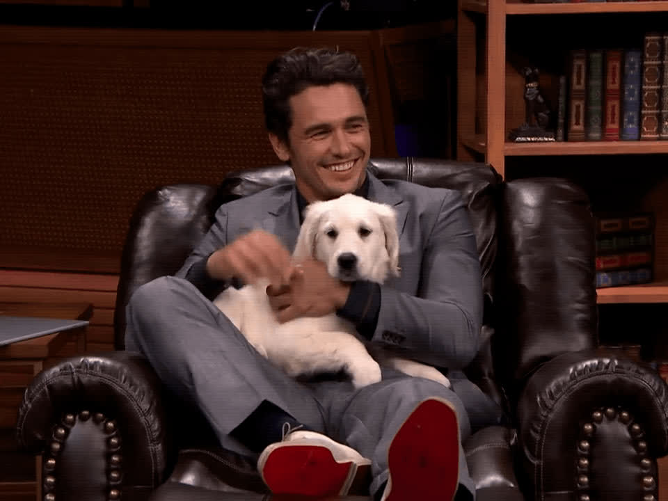 awww, cute, james franco, puppy, tonight show, James Franco and Puppy GIFs