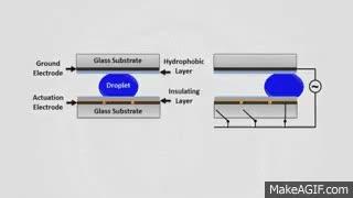 Watch and share Sandia Digital Microfluidic Hub GIFs on Gfycat