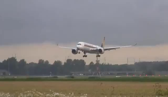 Watch and share Singapore Airlines A350 Landing At Amsterdam Airport Schiphol GIFs on Gfycat