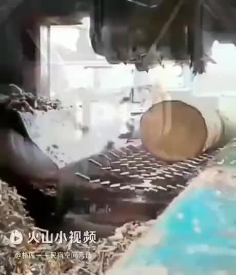 Watch and share Bark Stripper GIFs by Gif-vif.com on Gfycat