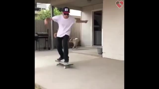Watch These Skaters are CRAZY! (Wins & Fails) GIF on Gfycat. Discover more Are, crazy, fail, fails, skate, skateboard, skateboarding, skaters, these, wins GIFs on Gfycat