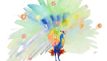 Watch Watercolor Peacock GIF on Gfycat. Discover more related GIFs on Gfycat