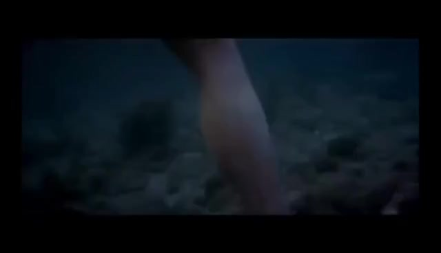 Watch and share Shark Leg GIFs on Gfycat