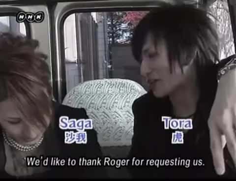 Watch Saga & Tora GIF on Gfycat. Discover more funny GIFs on Gfycat