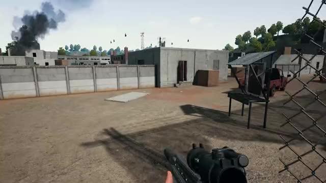 NeWg3n killed UCE-PAVA