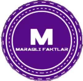 Top 30 Maraqli Faktlar Gifs Find The Best Gif On Gfycat