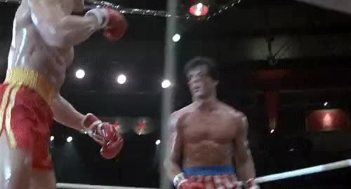 Watch rocky GIF on Gfycat. Discover more related GIFs on Gfycat